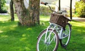 bici cestino