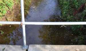 rio geola
