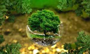 tutela ambientale modificato 1