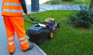 60 manutenzione verde pubblico operaio